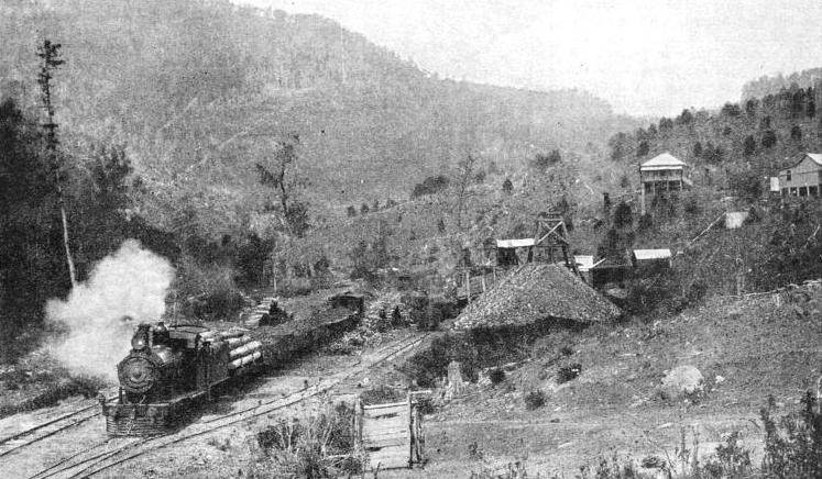 A COAL TRAIN at the Tannymorel coal mines on the Killarney branch of the main Queensland railway system