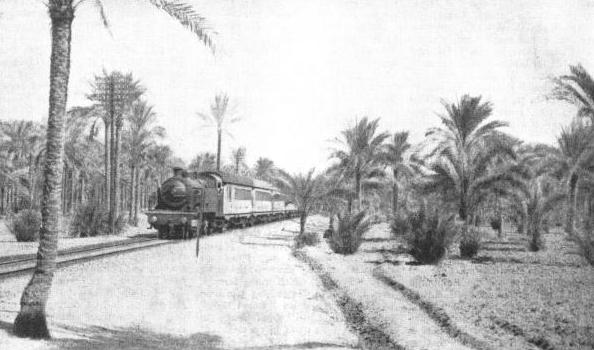 A PASSENGER TRAIN IN EGYPT