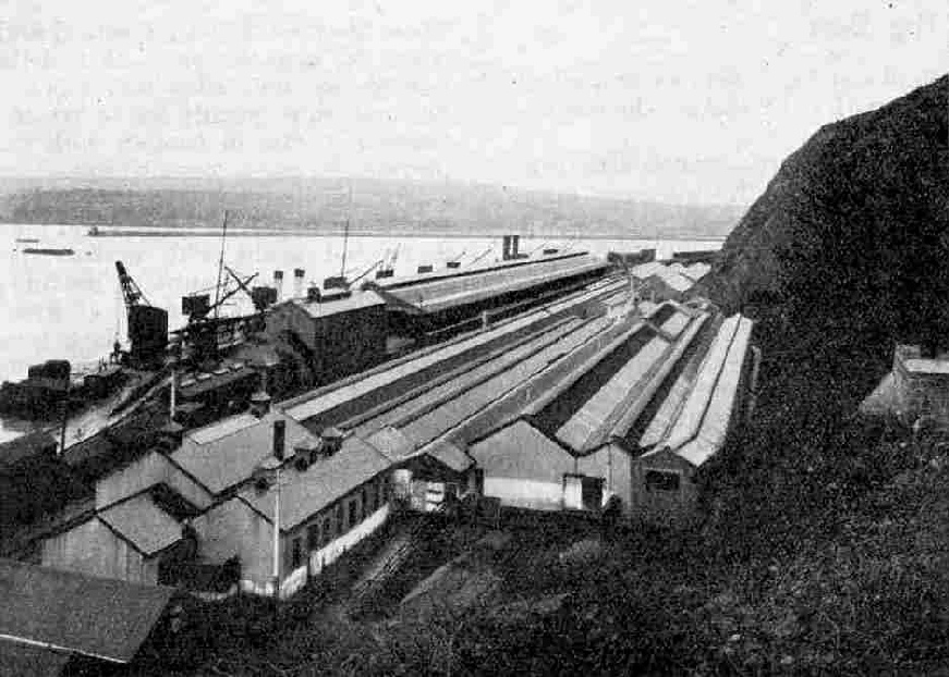 The Station and Quay, Fishguard
